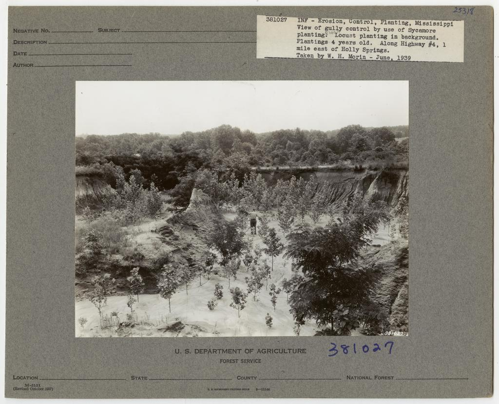 Construction Erosion Control - Mississippi