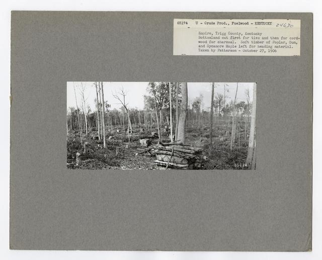 Crude Products: Fuelwood - Kentucky