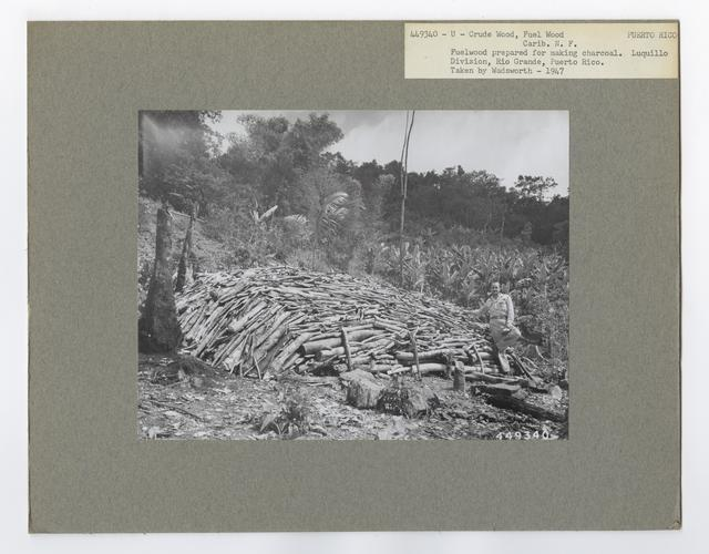 Crude Products: Fuelwood - Puerto Rico