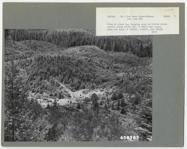 Cut -Over Areas (Repeat Series) - Idaho
