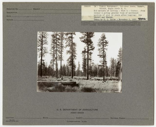 Cut -Over Areas (Repeat Series) - Oregon