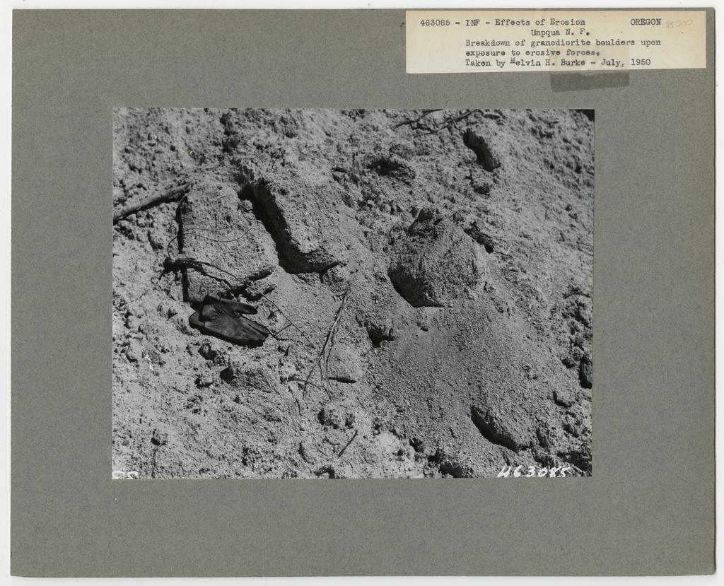 Erosion Effects - Oregon