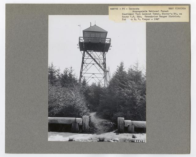 Fire Control: Lookouts - West Virginia
