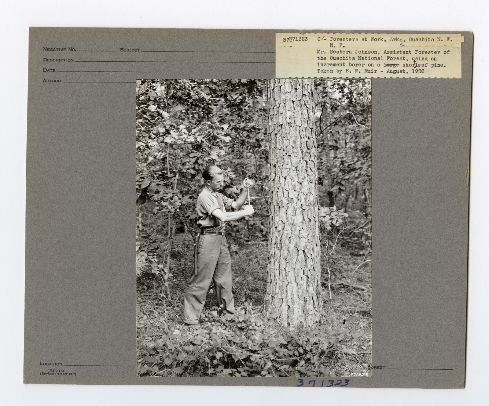 Forest Mensuration: Surveying/Studies - Arkansas
