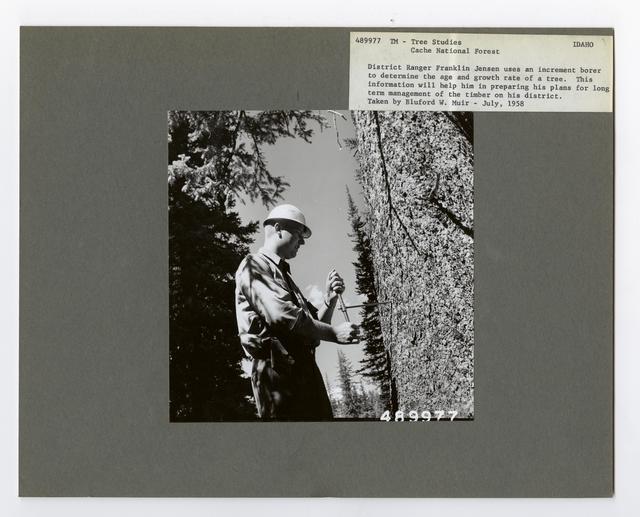 Forest Mensuration: Surveying/Studies - Idaho