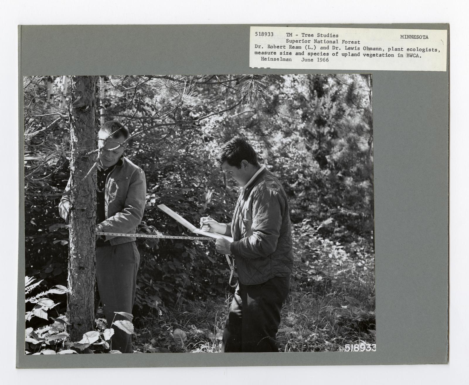 Forest Mensuration: Surveying/Studies - Minnesota