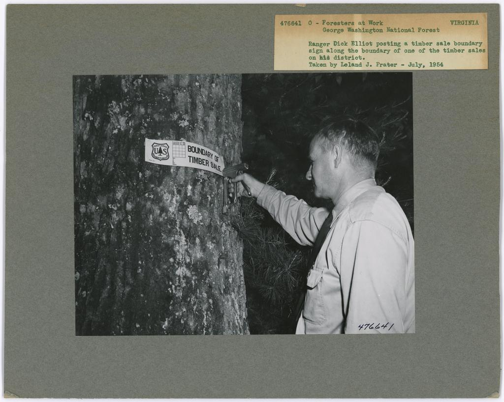 Foresters at Work - Virginia