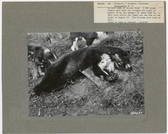Injured Livestock - All States