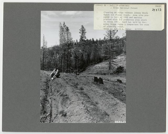 Land Use Rehabilitation - Idaho