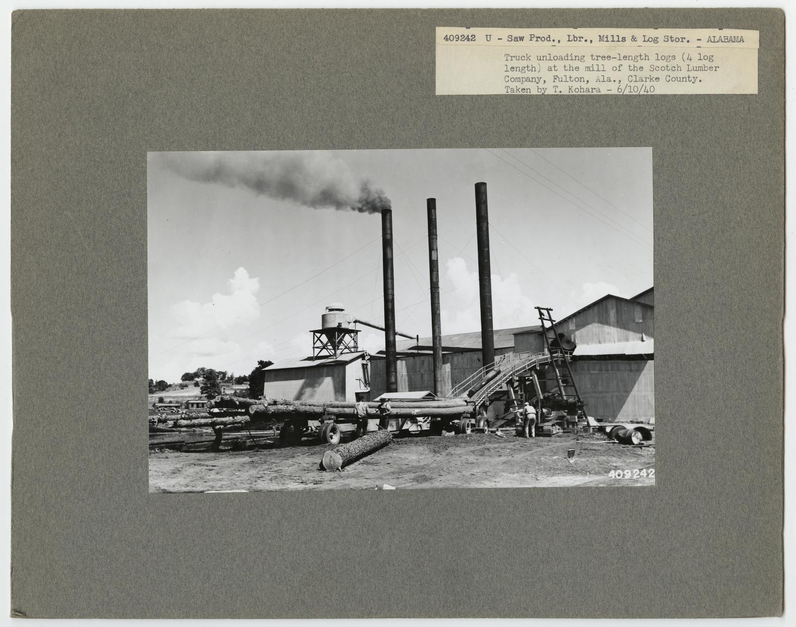 Large Sawmills - Alabama