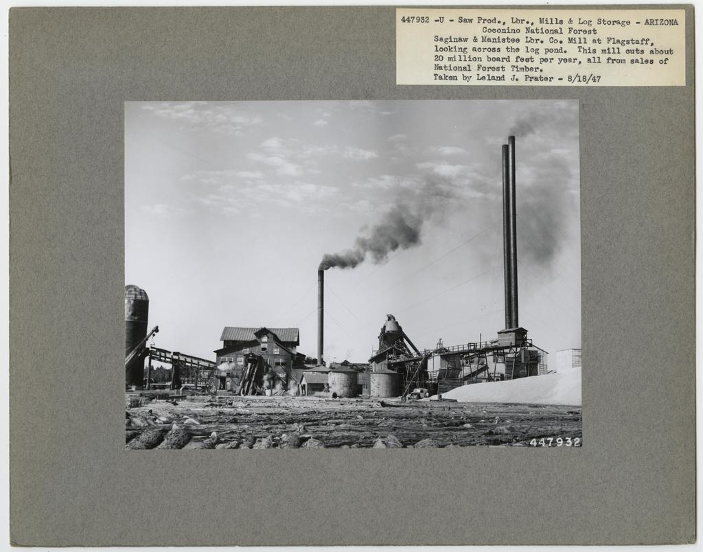 Large Sawmills - Arizona