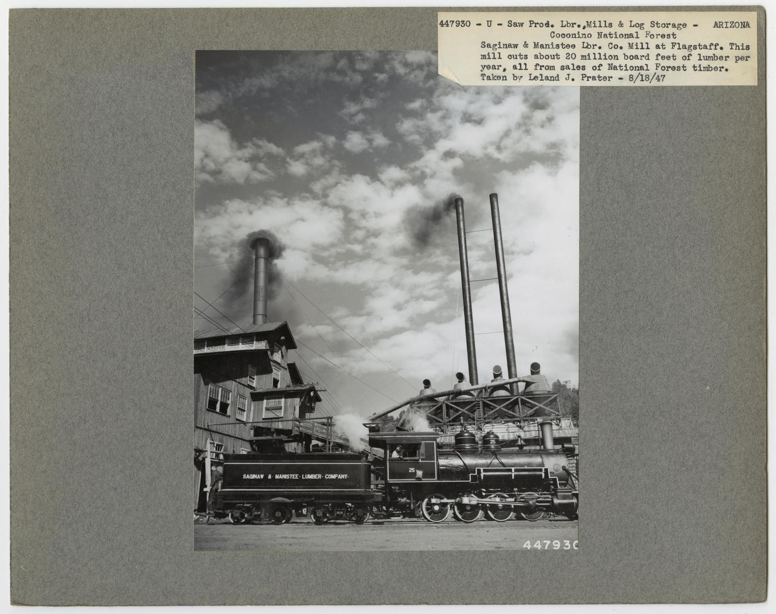 Large Sawmills - Arizona