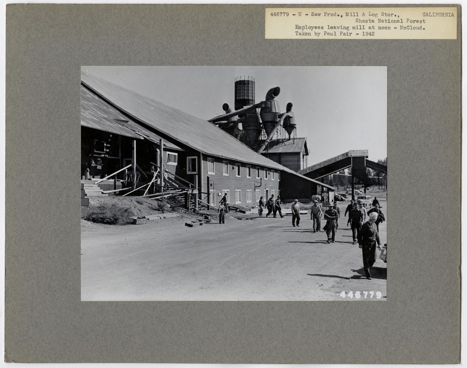 Large Sawmills - California