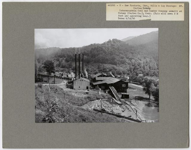 Large Sawmills - Kentucky