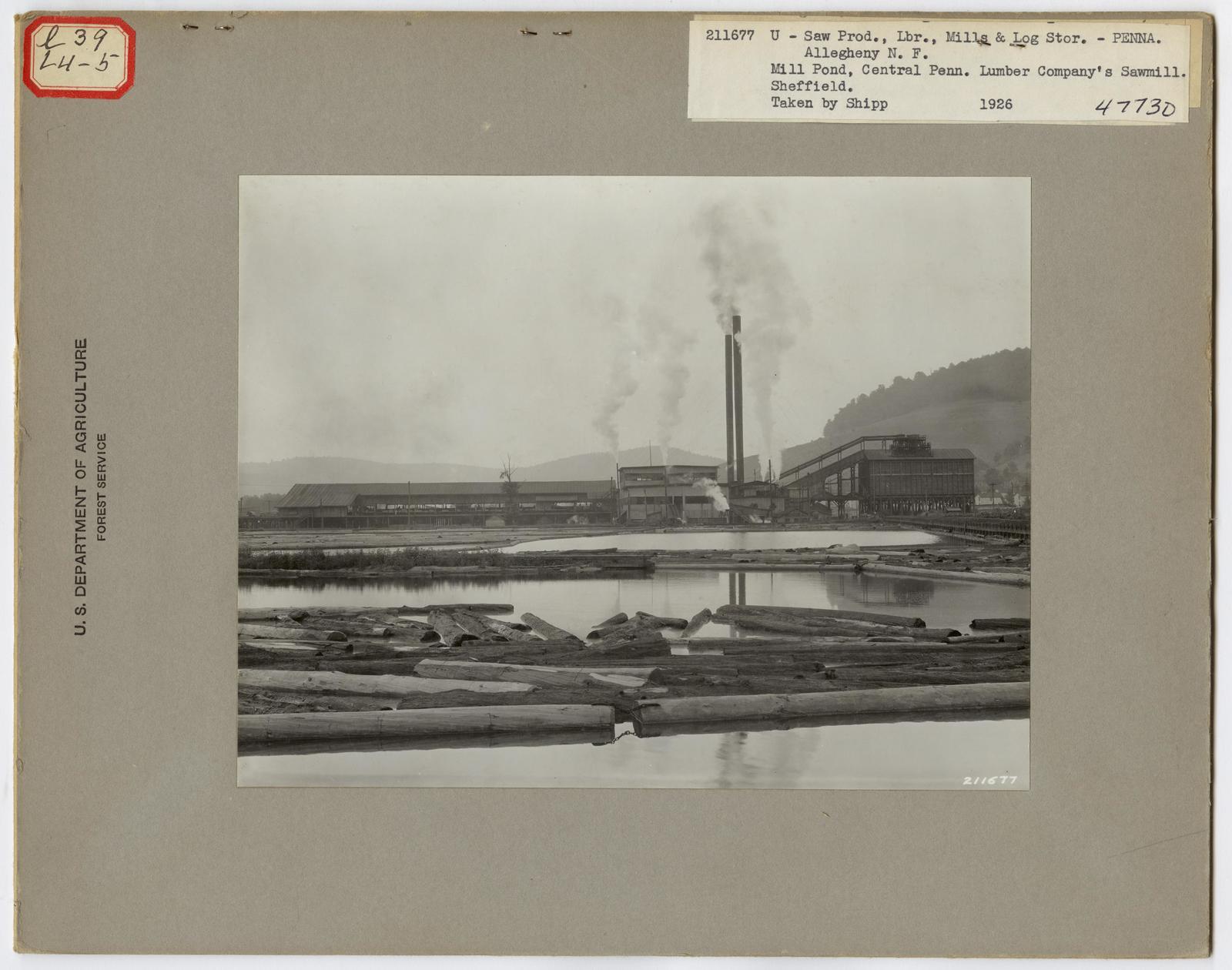 Large Sawmills - Pennsylvania