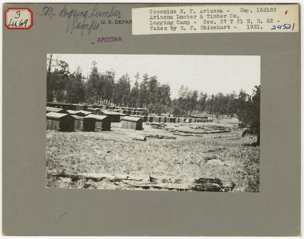 Logging Camps and Crews - Arizona