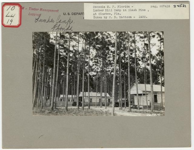 Logging Camps and Crews - Florida