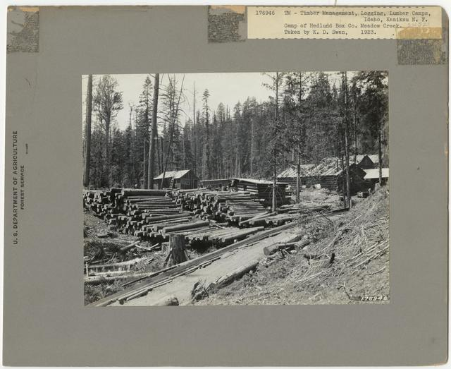 Logging Camps and Crews - Idaho