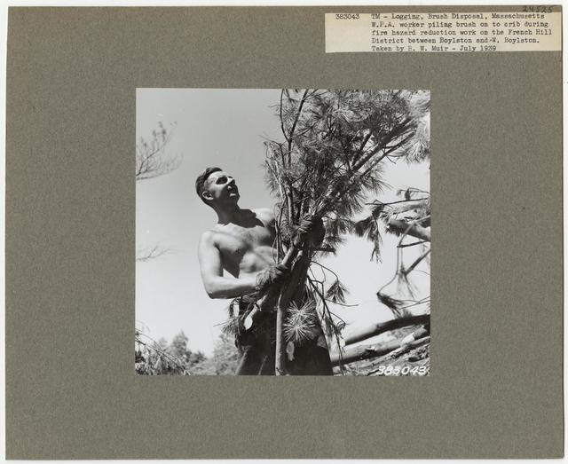 Logging Camps and Crews - Massachusetts