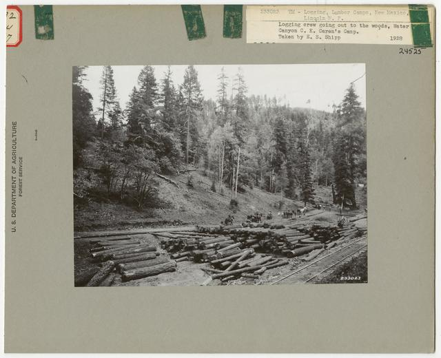 Logging Camps and Crews - New Mexico