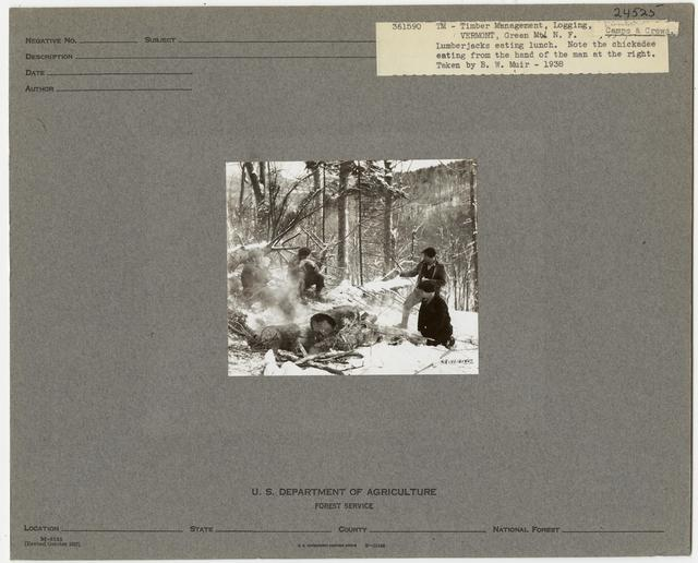 Logging Camps and Crews - Vermont