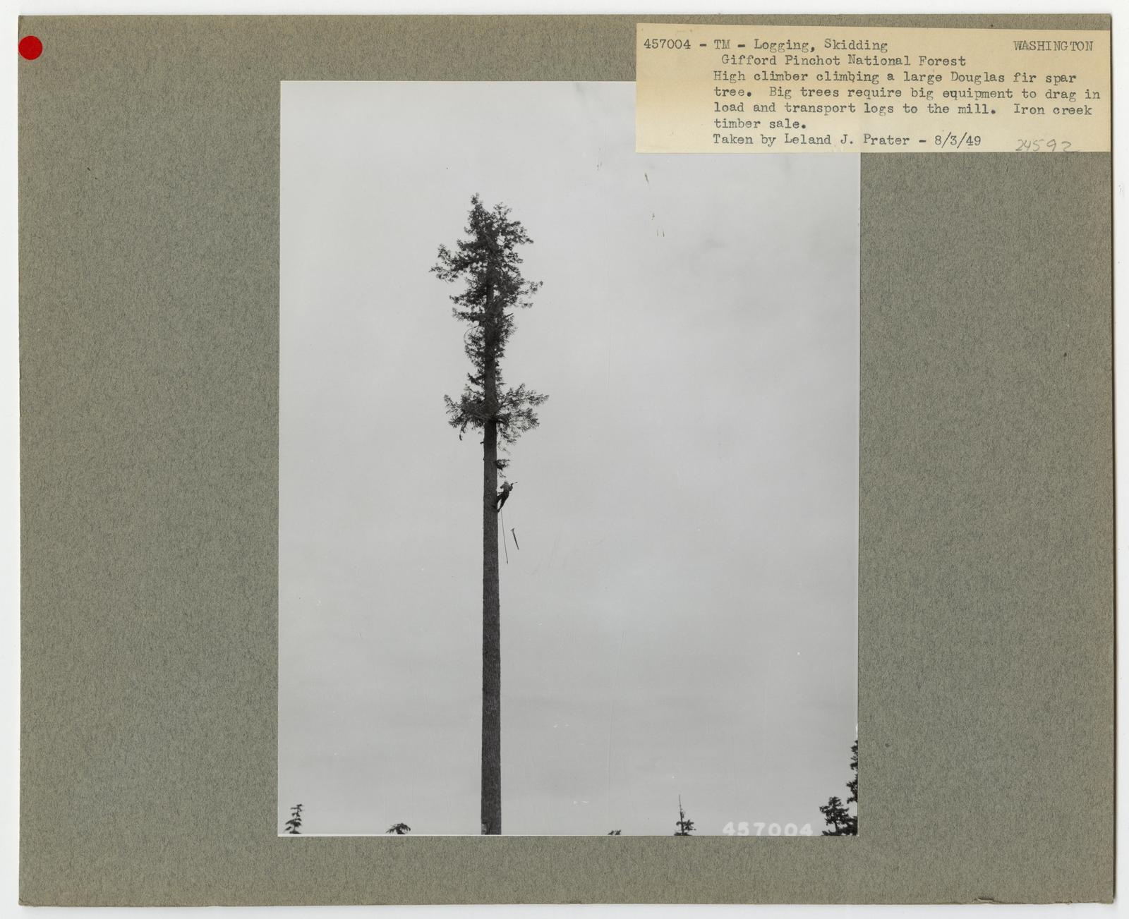 Logging: High Lead Log Skidding - Washington