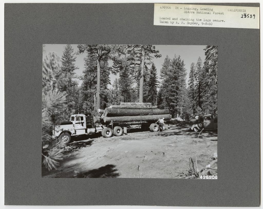 Logging: Loading Logs - California