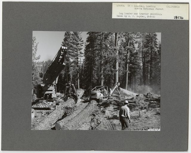 Logging: Loading Logs - California