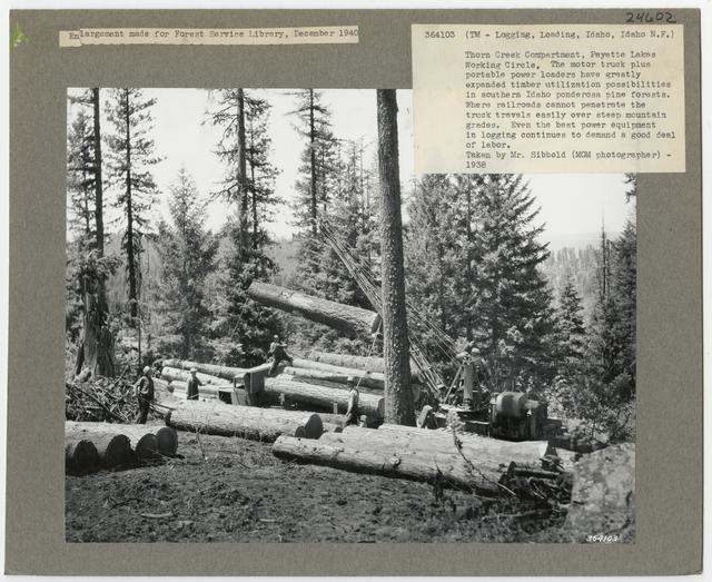 Logging: Loading Logs - Idaho