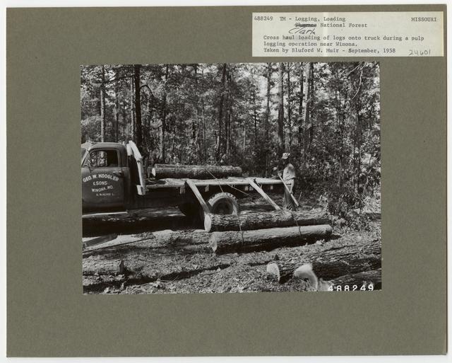 Logging: Loading Logs - Missouri