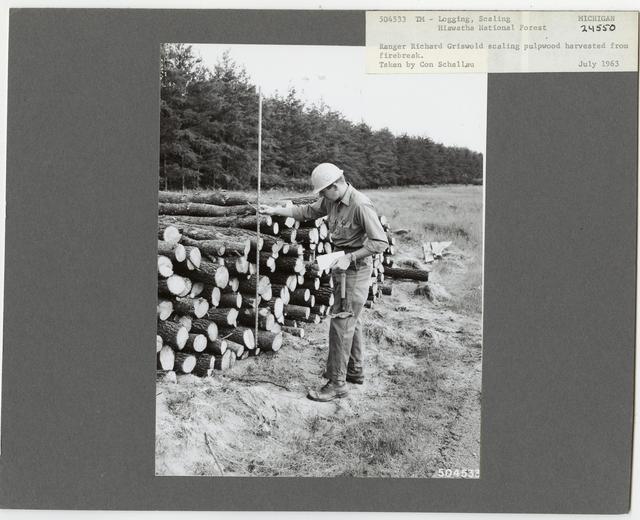 Logging: Scaling - Michigan