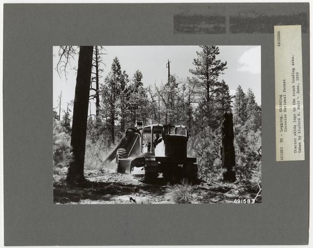 Logging: Skidding with Tractors - Arizona