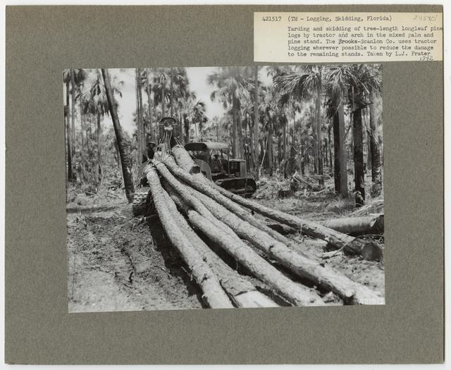 Logging: Skidding with Tractors - Florida