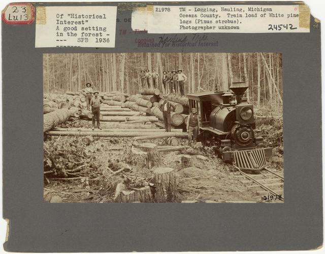 Logging: Transportation: Railroads - Michigan