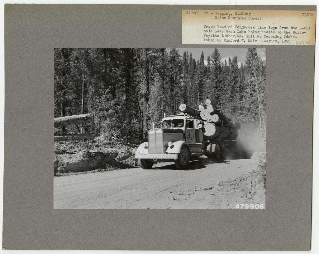 Logging: Transportation: Trucks - Idaho