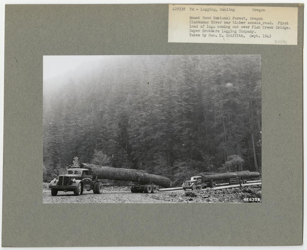Logging: Transportation: Trucks - Oregon