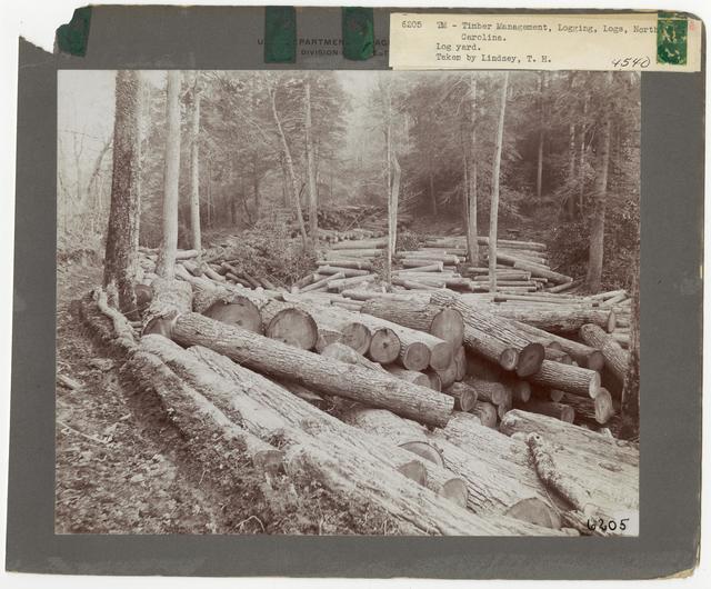 Logs & Log Decks - North Carolina