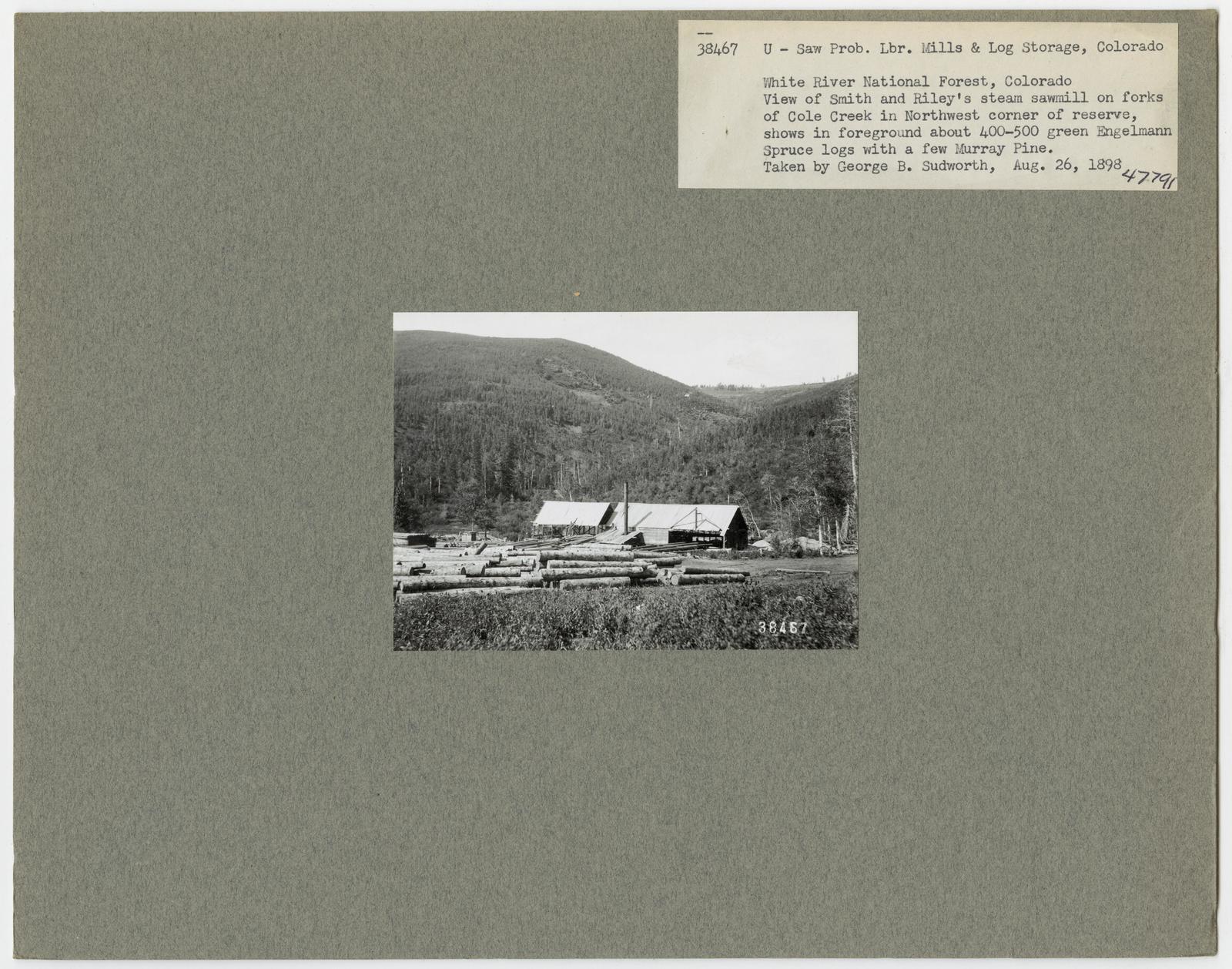 Mills, Milling and Log Storage - Colorado
