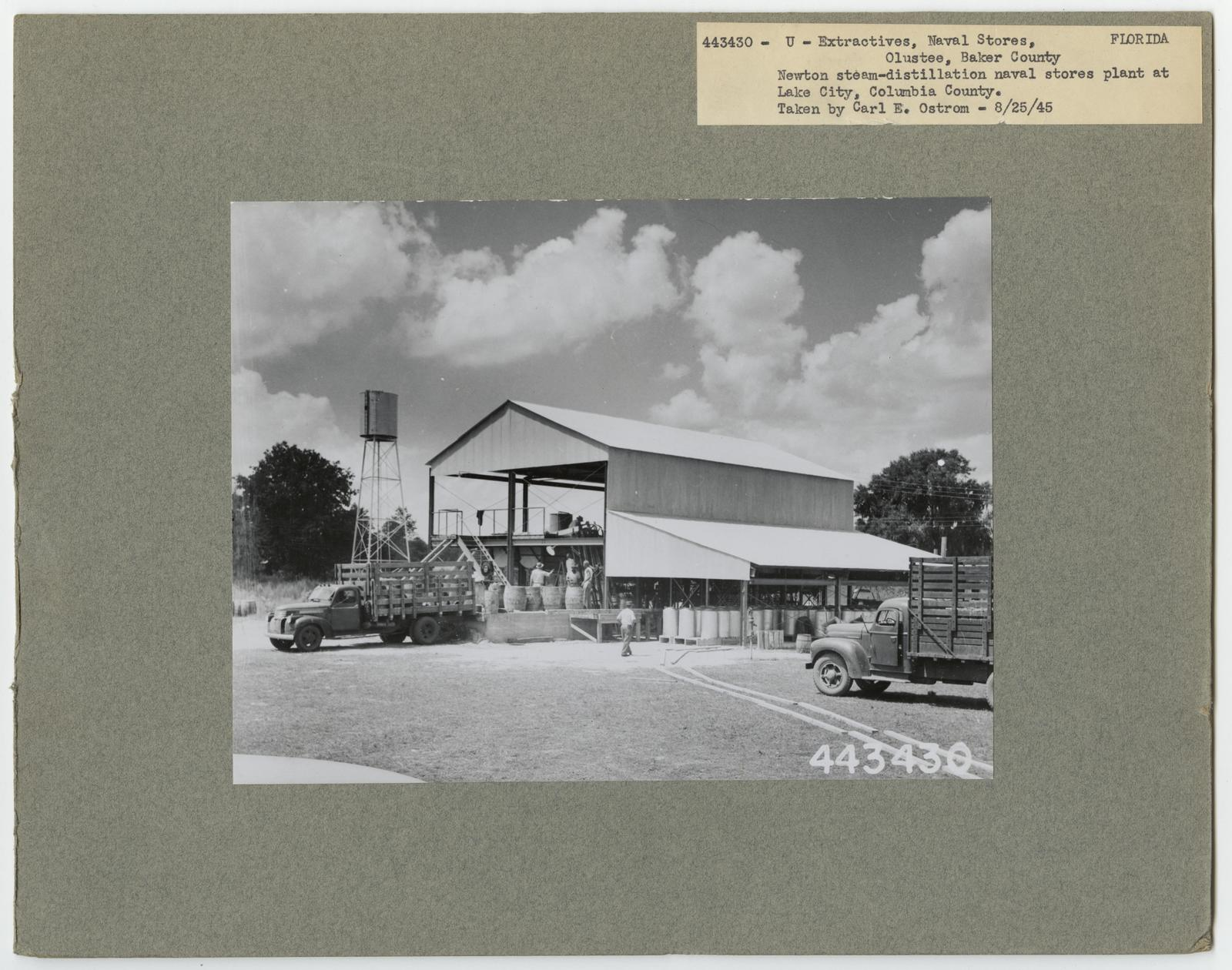 Naval Stores - Florida