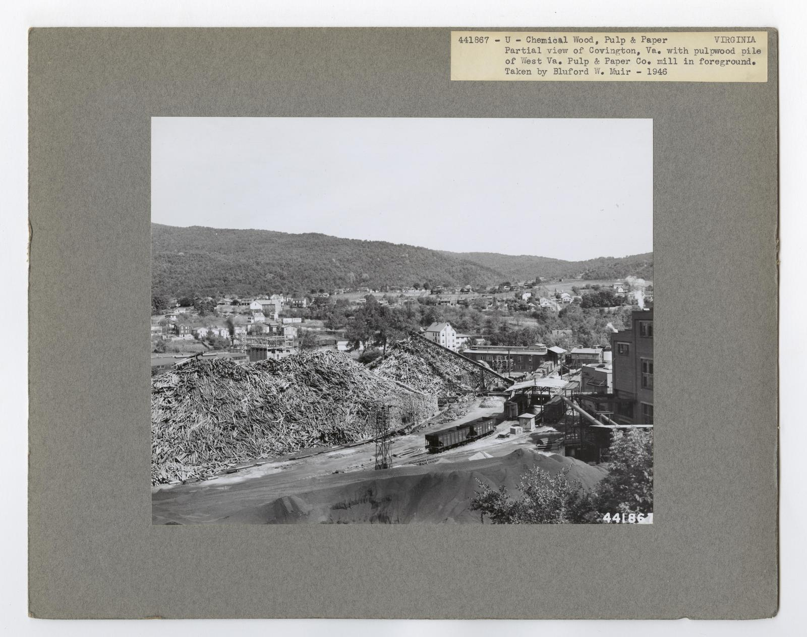 Pulp and Paper Mills - Virginia