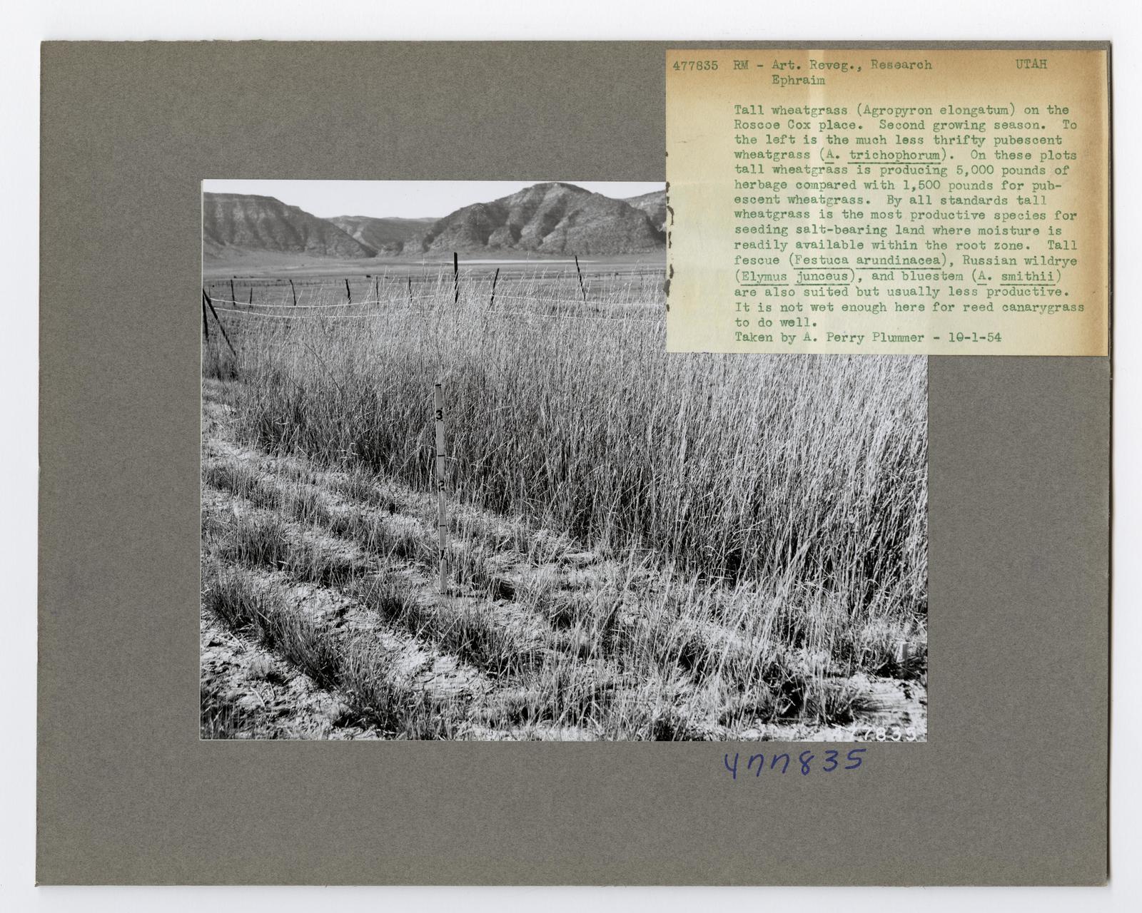 Range Management Research - Wyoming