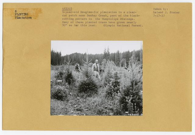 Range Plant Nurseries