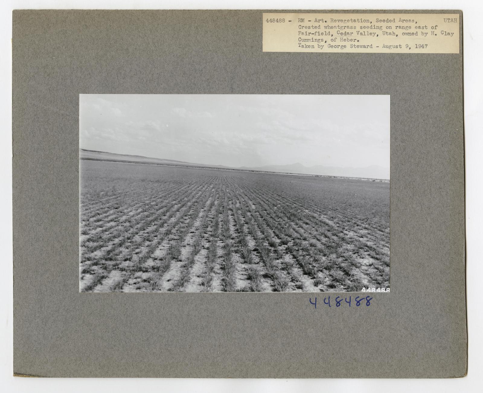 Range Revegetation - Plant Control - Utah
