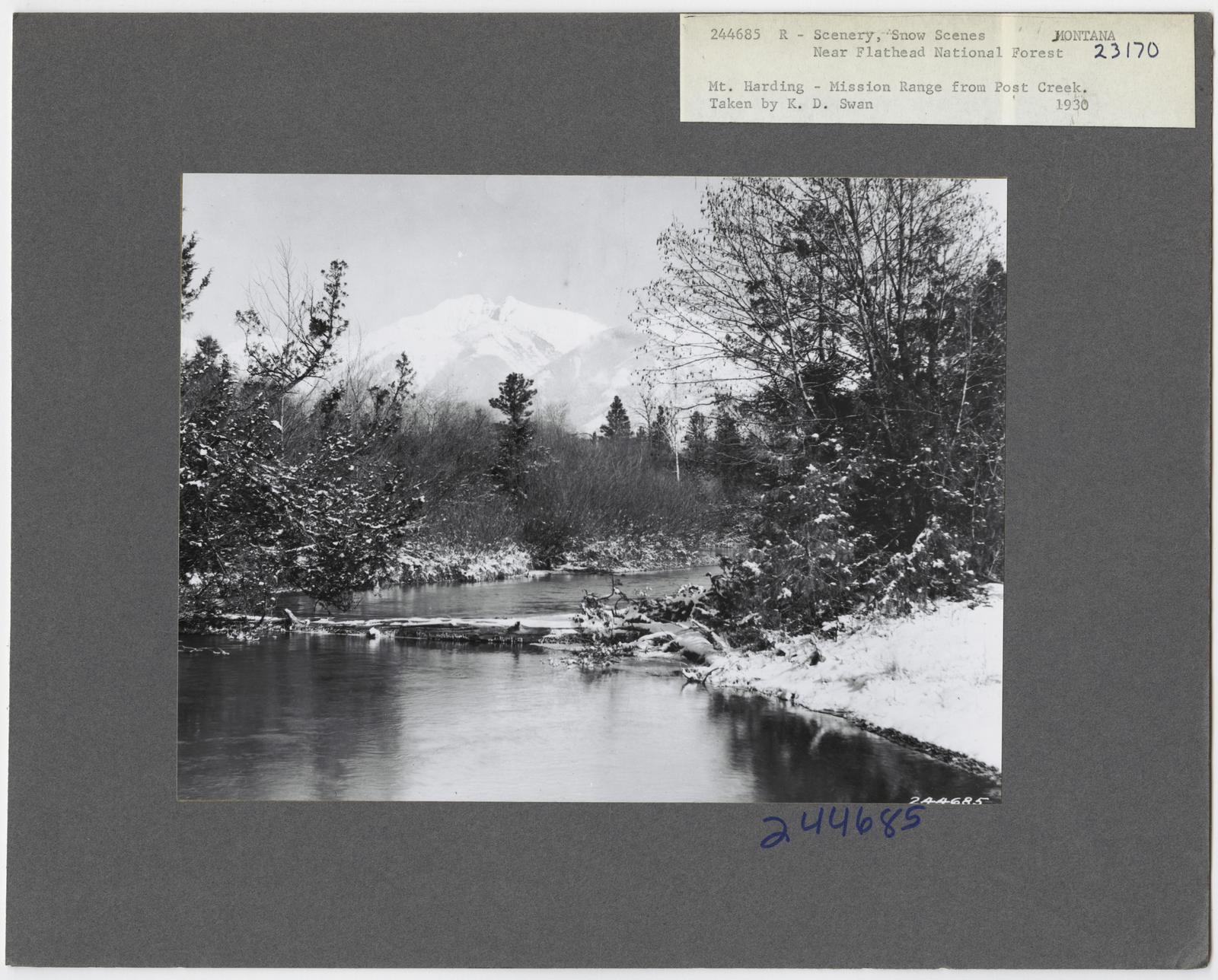 River Scenes - Montana