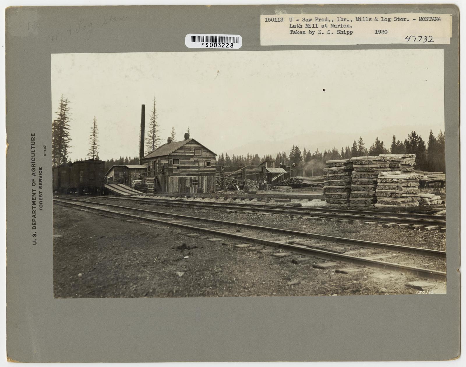 Seasoning and Shipping Lumber - Montana