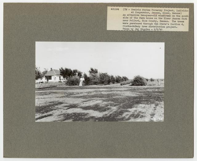 Shelterbelts: Windbreaks - Kansas