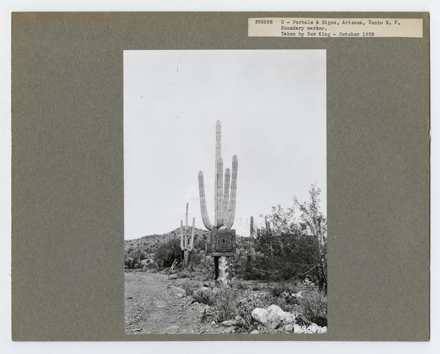 Signs - Arizona