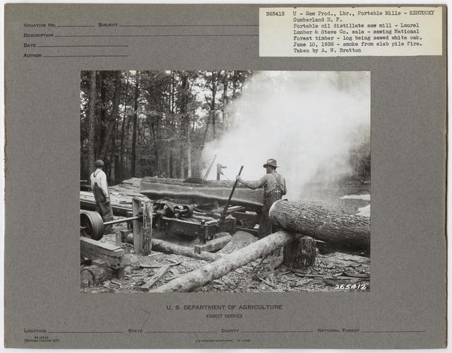 Small Sawmills (mold) - Kentucky