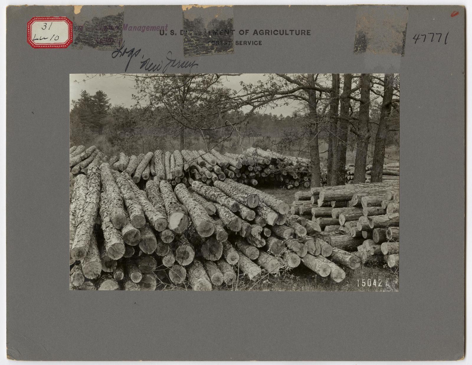 Small Sawmills - New Jersey