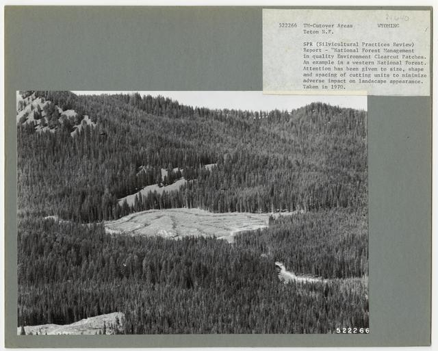Timber Management - Cut -over Area - Wyoming